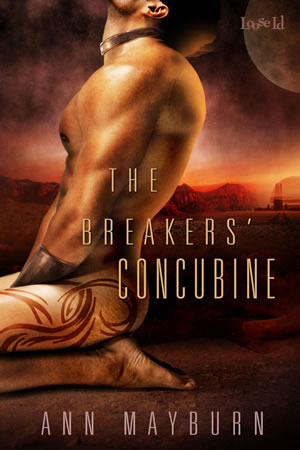 The Breaker's Concubine by Ann Mayburn Erotic Sci-Fi Romance